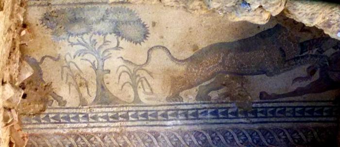 mosaico Villa Romana de Salar