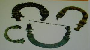 fibulas